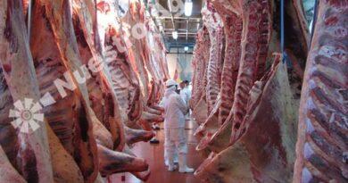Estados Unidos aprobó la auditoría al sistema argentino de inspección de carnes bovinas