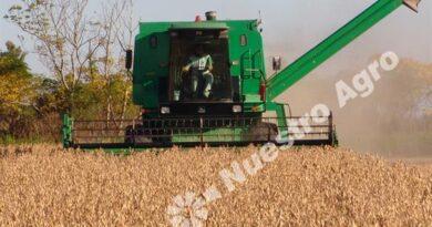 Empresas agropecuarias tienen pocas expectativas este año y mantienen dudas para el que viene