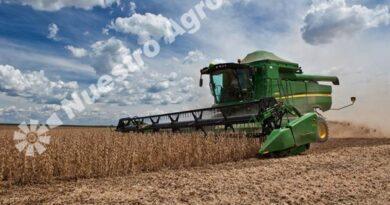 La BCR volvió a recortar la estimación para la producción de soja, que apenas superaría los 50 M Tn