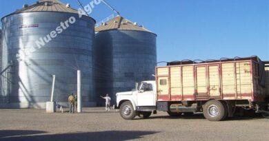El Banco Central dispuso una restricción para que pymes del agro puedan tomar créditos