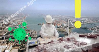 El rebrote en China extrema los controles en los puertos pero podría favorecer los envíos de carne argentina