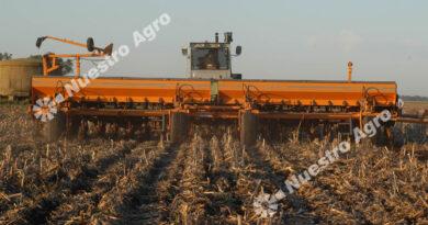 Confirman que se sembrará menos trigo esta campaña en el centro norte santafesino