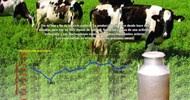 REVISTA NUESTRO AGRO: DICIEMBRE 2019 N° 313