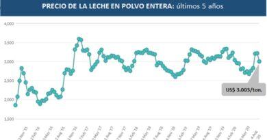 Fuerte caída de la Leche en Polvo en el mercado mundial