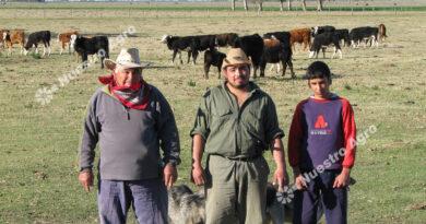 Los trabajadores rurales acordaron una paritaria salarial del 32% hasta fin de año