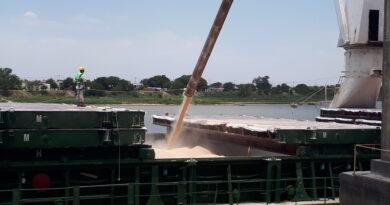 El Gobierno levantó la suspensión de las exportaciones de maíz, pero fijó un cupo diario para las DJVE de 30.000 toneladas