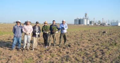 """La Cooperativa Lehmann creó el """"Proyecto Forestal San Agustín"""", con la mira puesta en la producción y la sustentabilidad"""