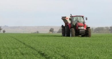 Aseguran que en 2020 el uso de fertilizantes registró un crecimiento superior al 7% respecto al año pasado