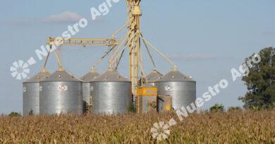 El Gobierno cierra las exportaciones de maíz hasta marzo