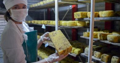 Agricultura y Salud incorporan la elaboración artesanal de productos lácteos al Código Alimentario Argentino