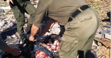 """Secuestraron mercadería de """"dudosa procedencia"""" en distintas carnicerías del centro norte santafesino"""