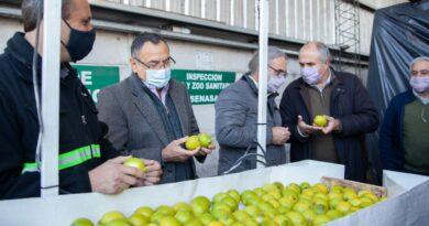 Certificaron el primer cargamento de limones que se exportará a la Unión Europea