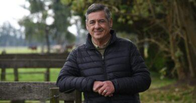 """Tras las PASO, Sociedad Rural le aconsejó a Alberto Fernández """"escuchar los resultados"""" y levantar el cepo"""