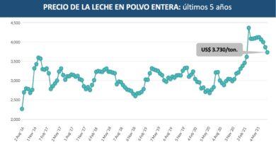 Vuelve a caer el precio de la leche en polvo en el mercado mundial