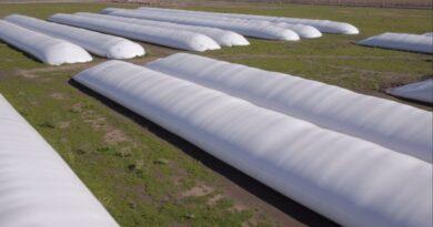 Confirman que Argentina comenzará a exportar silobolsas a Pakistán