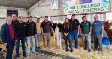 """Cabaña """"La Lilia"""" se quedó con el centenario Concurso de Vacas Lecheras que organiza la Rural de Rafaela"""